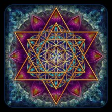 flower_of_life_fractal_star_of_david_by_lilyas-lily.seidel.d743dba